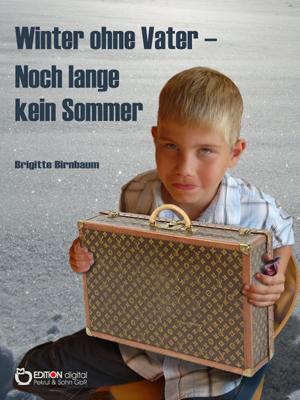 Winter ohne Vater - Noch lange kein Sommer. von Brigitte Birnbaum