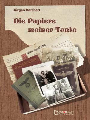 Die Papiere meiner Tante. Roman von Jürgen Borchert