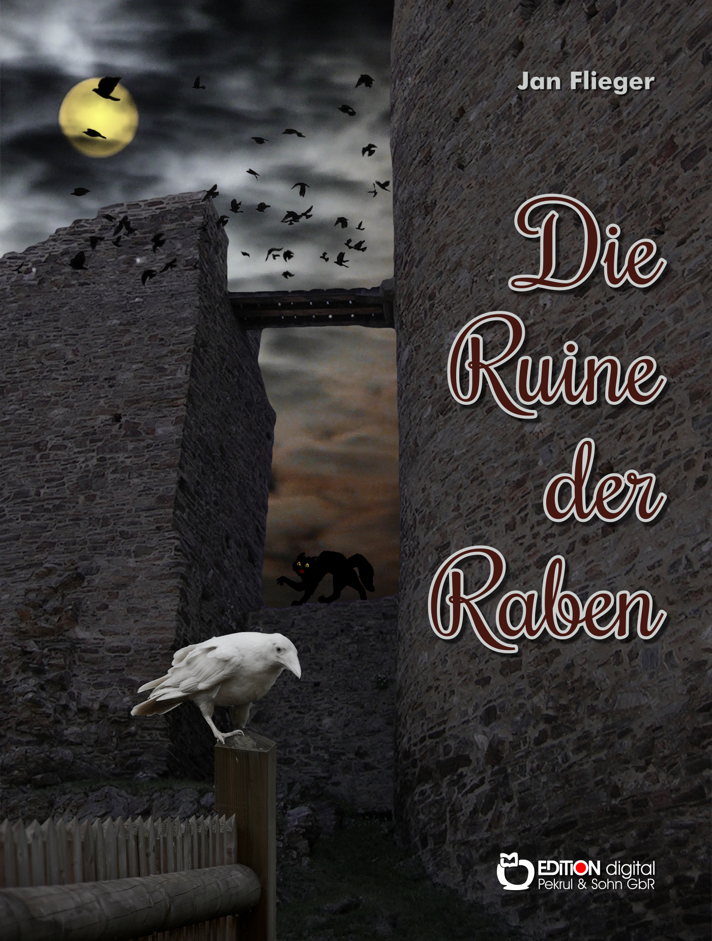 Die Ruine der Raben von Jan Flieger