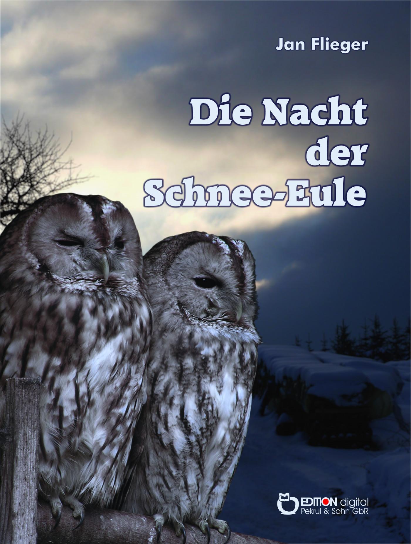 Die Nacht der Schnee-Eule von Jan Flieger