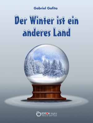 Der Winter ist ein anderes Land. von Gabriel Gafita, Holda Schiller (Übersetzer)