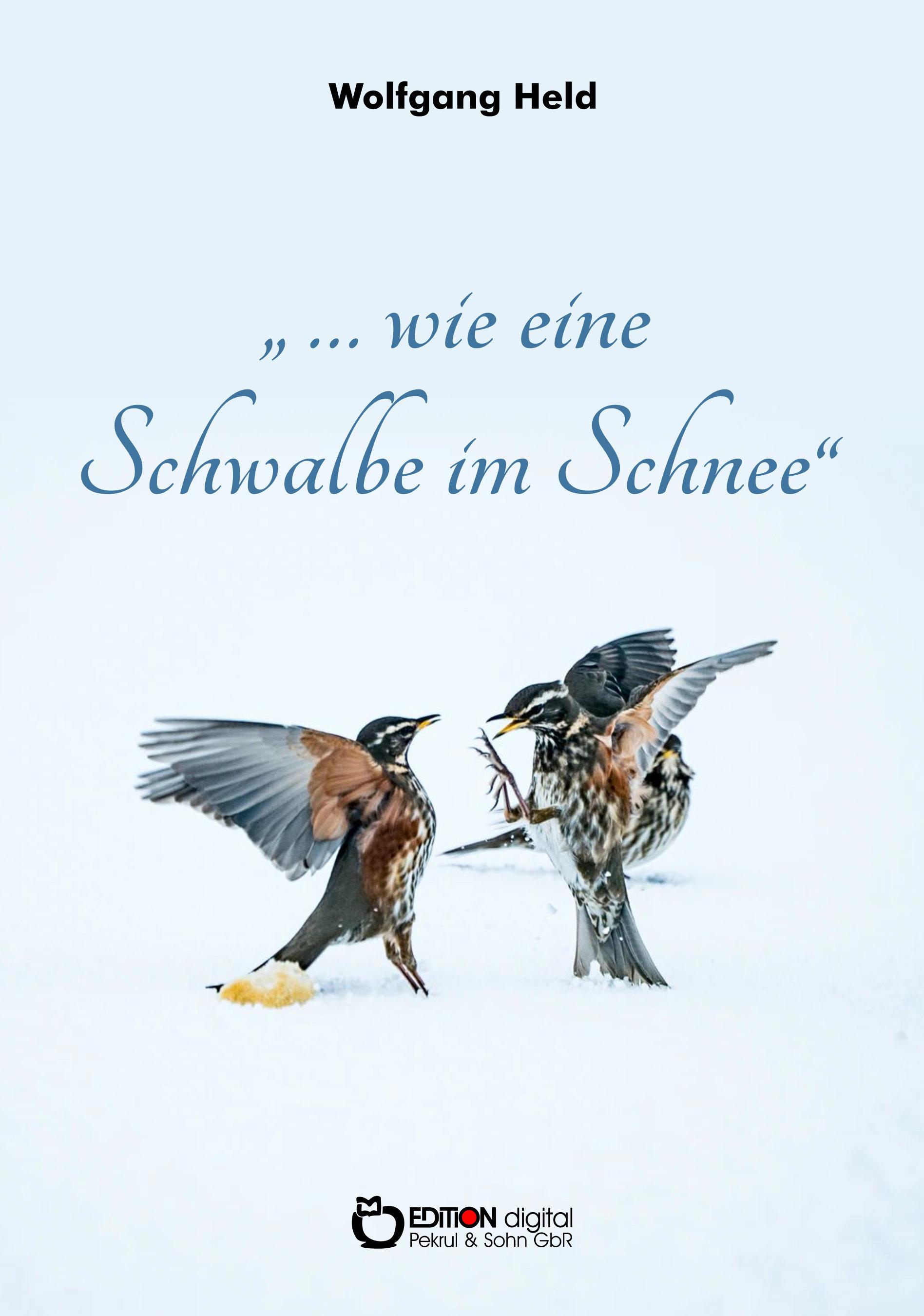Wie eine Schwalbe im Schnee. Historischer Abenteuerroman von Wolfgang Held